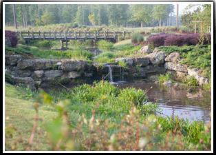 Ocean Rigde Waterfall Garden