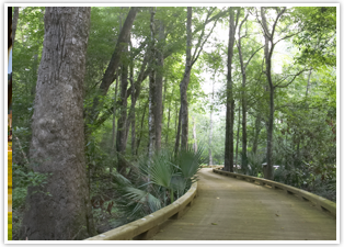 Ocean Ridge Miles of walking trails